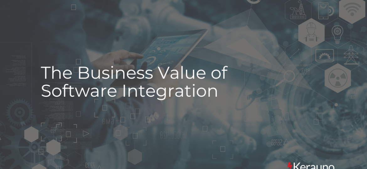 The Business Value of Software Integration